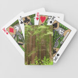 Redwood Trees at Muir Woods National Monument Bicycle Playing Cards