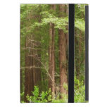 Redwood Trees at Muir Woods National Monument Cover For iPad Mini