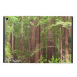 Redwood Trees at Muir Woods National Monument iPad Air Case
