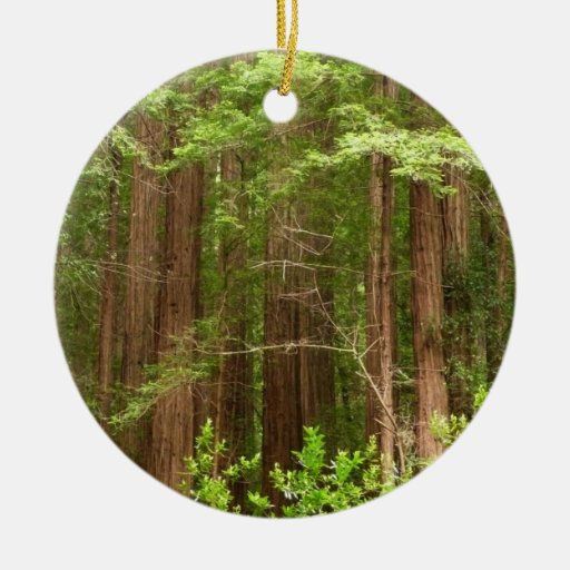 Redwood Trees at Muir Woods National Monument Double-Sided Ceramic Round Christmas Ornament