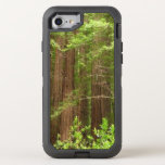 Redwood Trees at Muir Woods National Monument OtterBox Defender iPhone 7 Case