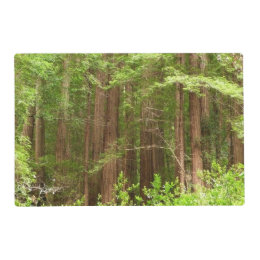 Redwood Trees at Muir Woods National Monument Placemat