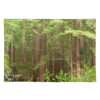 Redwood Trees at Muir Woods National Monument Cloth Placemat