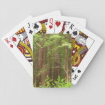 Redwood Trees at Muir Woods National Monument Playing Cards