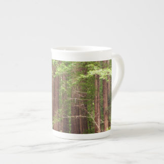 Redwood Trees at Muir Woods National Monument Tea Cup