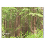 Redwood Trees at Muir Woods National Monument Tissue Paper