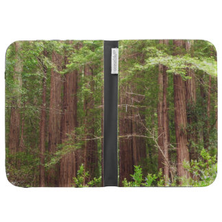 Redwood Trees Kindle Cover