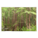 Redwood Trees Placemat
