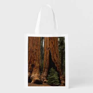 Redwood Trees, Sequoia National Park. Grocery Bag