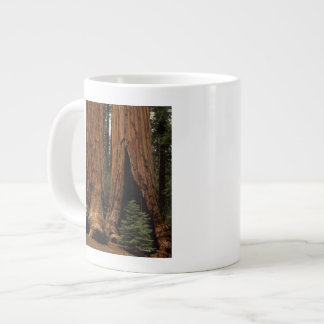 Redwood Trees, Sequoia National Park. Large Coffee Mug