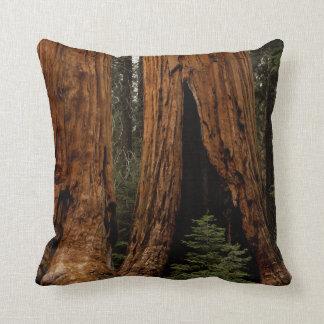 Redwood Trees, Sequoia National Park. Throw Pillow
