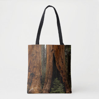 Redwood Trees, Sequoia National Park Tote Bag