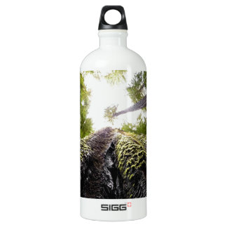 Redwood Trees with Mossy Trunk Aluminum Water Bottle