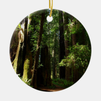 Redwoods and Ferns at Redwood National Park Ceramic Ornament