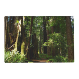 Redwoods and Ferns at Redwood National Park Placemat