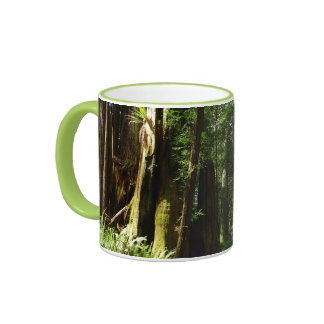 Redwoods and Ferns at Redwood National Park Ringer Mug