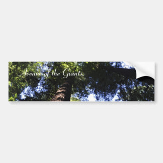 Redwoods Bumper Sticker