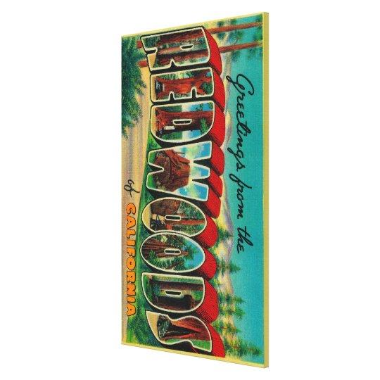 Redwoods, California - Large Letter Scenes Canvas Print