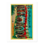 Redwoods, California - Large Letter Scenes Post Card