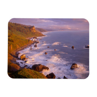 Redwoods coastline, California Magnet