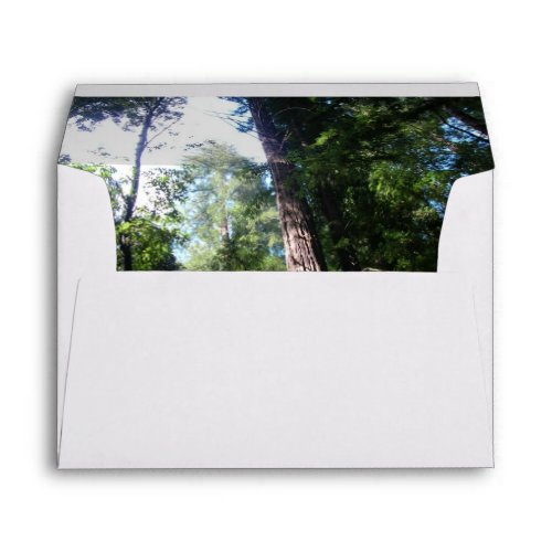 Redwoods Envelope