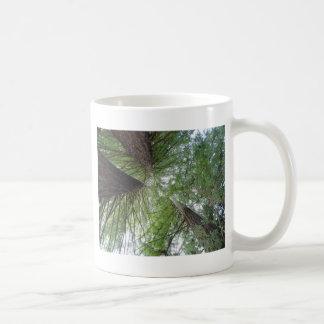Redwoods Mug