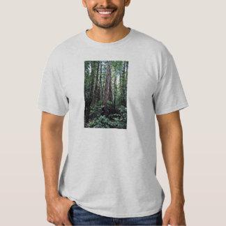Redwoods - Muir Woods National Monument T-shirt