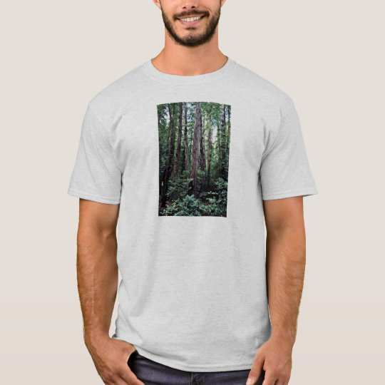 Redwoods - Muir Woods National Monument T-Shirt