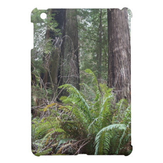 Redwoods National Forest Sword Ferns Cover For The iPad Mini