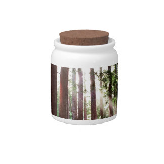 Redwoods National Park Candy Jar