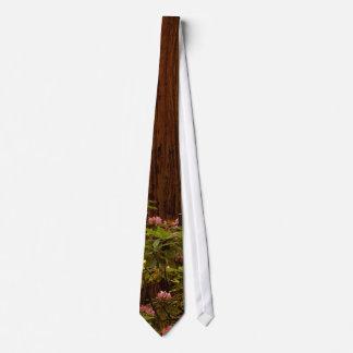 Redwoods National Park Tie