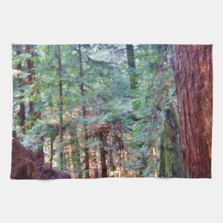 Redwoods Series #2: Through the Trees Hand Towels