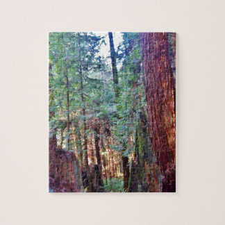 Redwoods Series #2: Through the Trees Puzzle