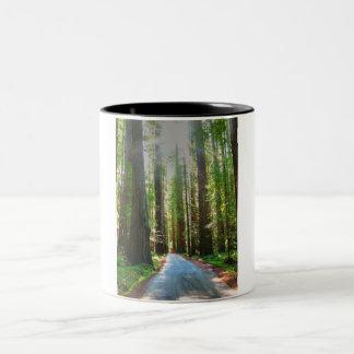 redwoods Two-Tone coffee mug