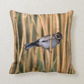 Reed Bunting American Mojo Pillow/Cushion