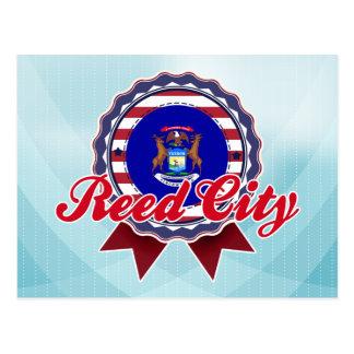 Reed City, MI Post Card
