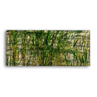 Reed envelope
