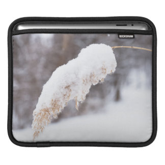 reed in snow sleeve for iPads