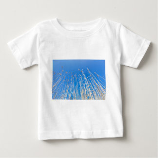 Reed stems with plumes against blue sky in spring tee shirt