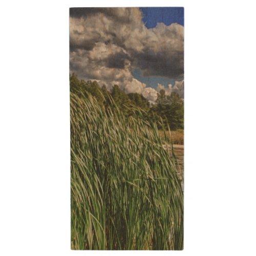Reeds Along A Campground Lake Wood Flash Drive