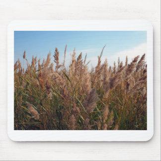 Reeds at the lake mouse pad