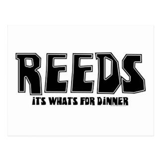 Reeds for Dinner Postcard