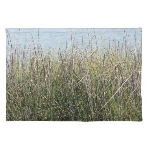 Reeds grass and water cloth place mat