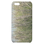 Reeds grass and water iPhone 5C cover