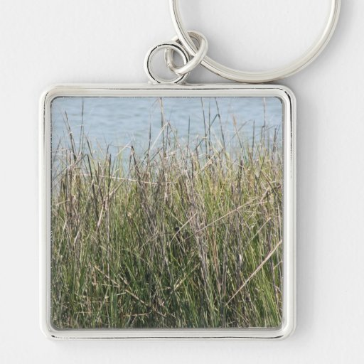 Reeds grass and water key chains