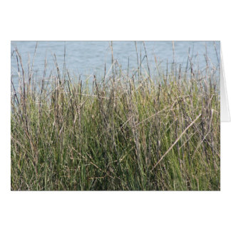 Reeds grass and water stationery note card
