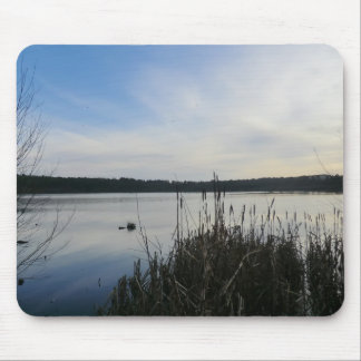 Reeds in Blakemere Moss in Delamere Forest Mouse Pad