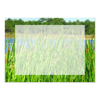 Reeds trees pond background announcement