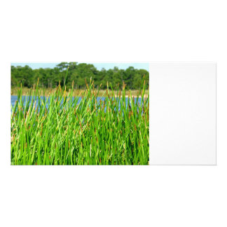 Reeds trees pond background custom photo card