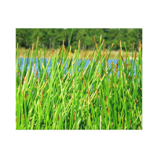 Reeds trees pond background gallery wrap canvas